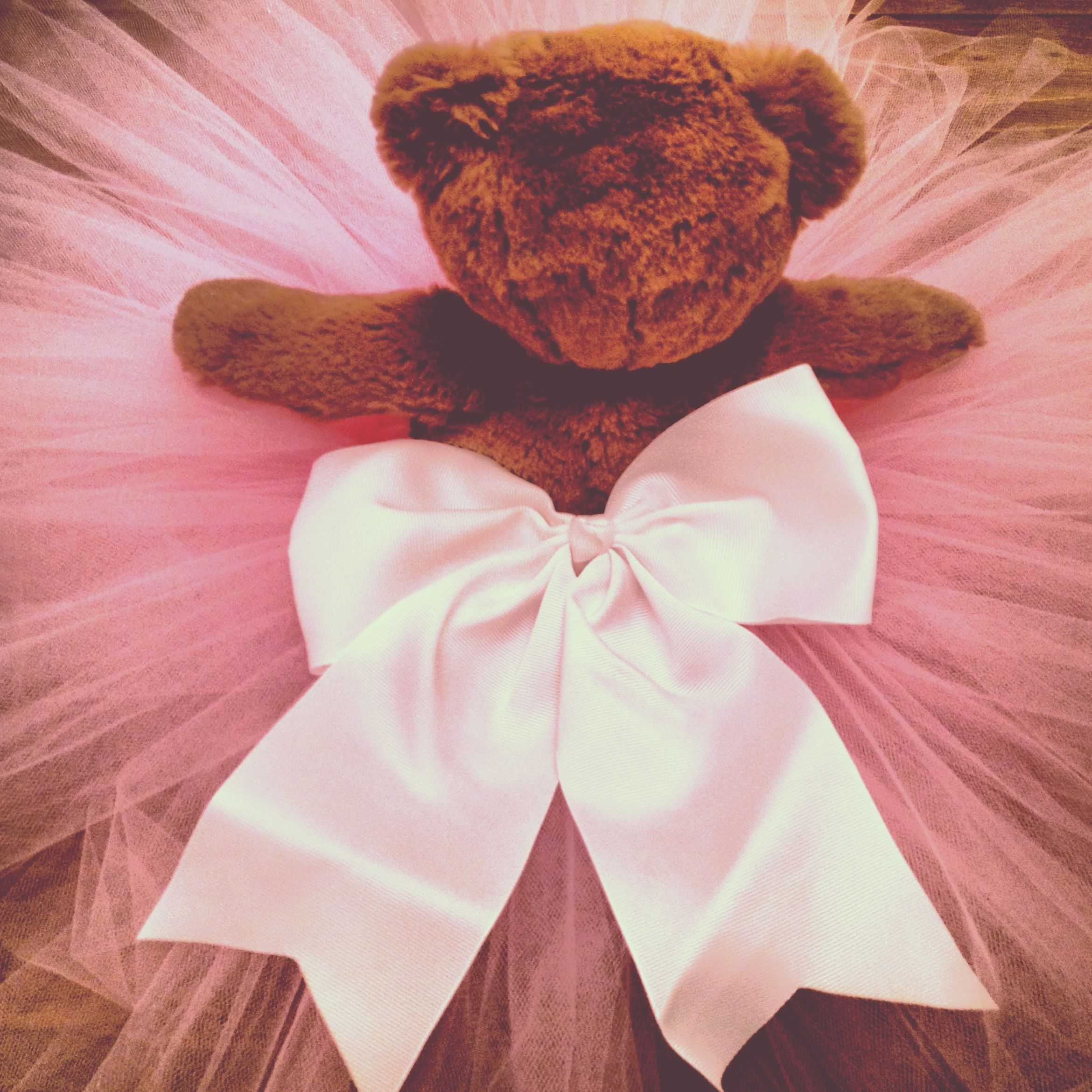 Mr. Bear modeling my first DIY tutu for our baby bee!